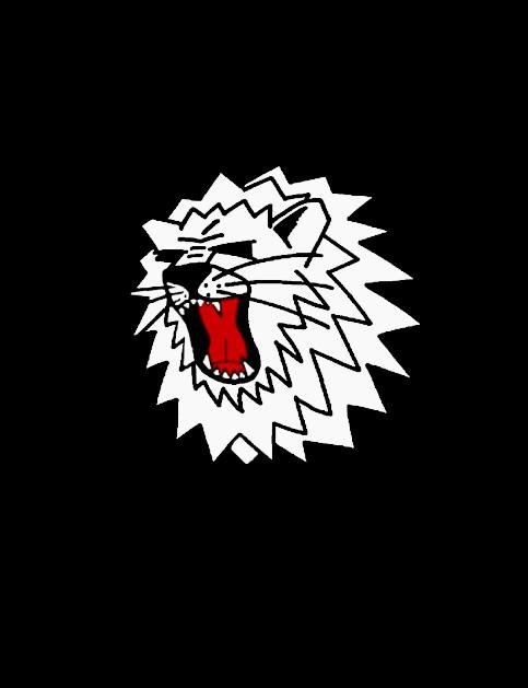 Logo_Lions_Cheerleader (1) Kopie